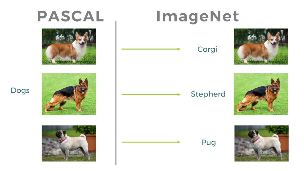 AI, Image Recognition, Computer Vision